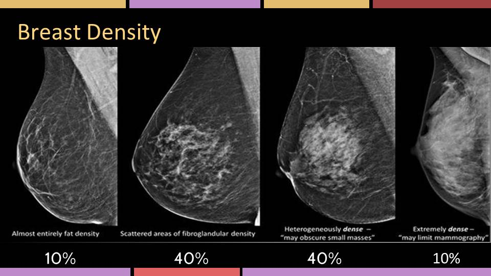 Scale of breast density as seen on mammogram from mostly fatty tissue to mostly dense tissue.